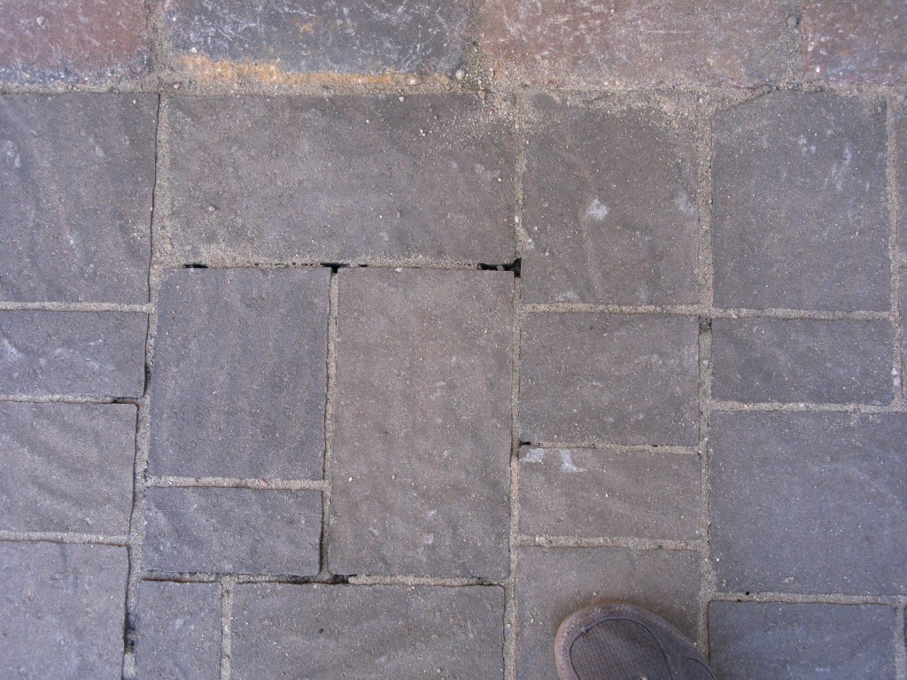 Notice that I didn't cut the brick that has its long edge along the border. Instead I cut the two bricks that abut this one. (The dark gaps are where our first round of sand has settled in the cracks between bricks.)